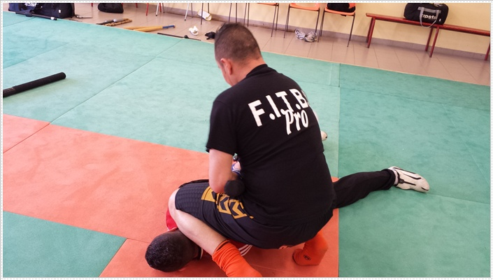 session de formation d u0026 39 instructeurs f i t b s  pro du 24 au 28 mars 2014  u00e0 al u00e8s en france avec